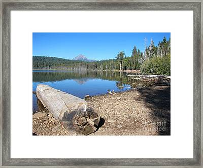 Framed Print featuring the photograph Lake Of The Woods 5 by Debra Thompson