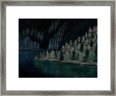 Lake Of The Woods Framed Print by Barbara St Jean