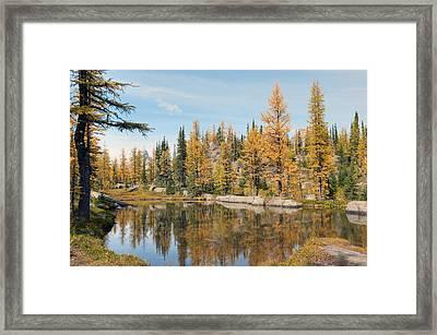 Lake Ohara Alberta Canada Framed Print by Heather Simonds
