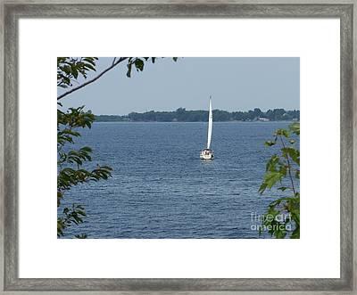 Lake Ontario Sailing Framed Print by Kevin Croitz