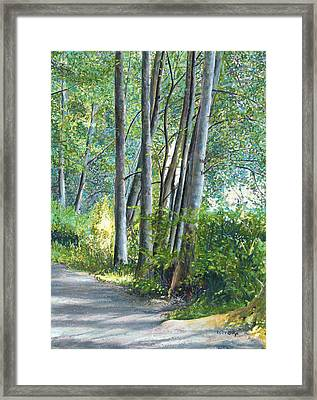 Lake Padden Series - Kathleen Keller Memorial Bench Framed Print