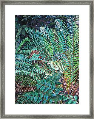 Lake Padden Series - Wendel Holboy Bench Framed Print