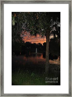 Lake Play Florida Framed Print
