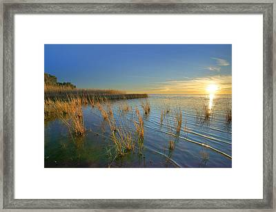Lake Pontchartrain At Sunset Louisiana Framed Print by Tim Fitzharris
