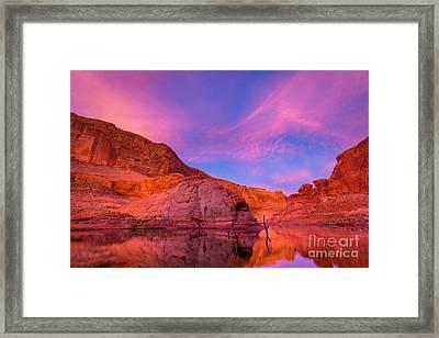 Lake Powell Dawn Framed Print by Inge Johnsson