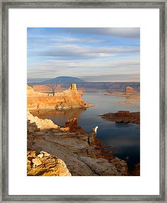 Lake Powell From Alstrum Pt 12 Framed Print