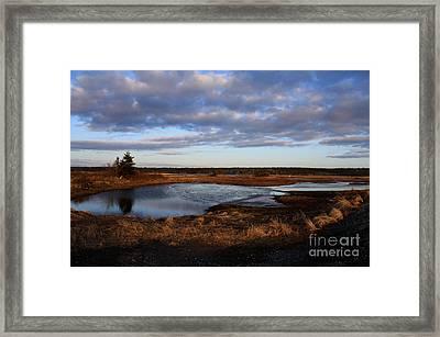 Lake Reflection Framed Print by Sandy MacNeil