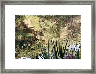 Framed Print featuring the photograph Lake Reflections by Kate Brown
