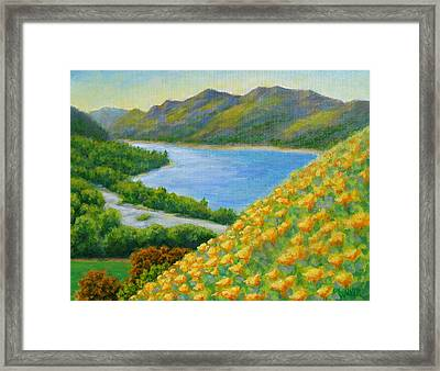 Lake Sonoma Poppies Framed Print by David LeRoy Walker