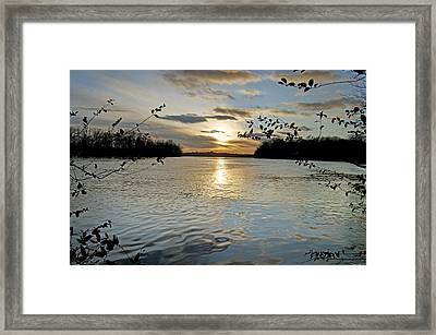 Lake Sunset Framed Print by Steven Michael