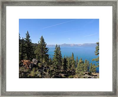 Lake Tahoe Through The Trees Framed Print