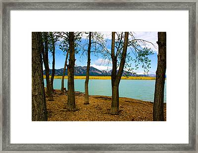 Lake Through The Trees Framed Print