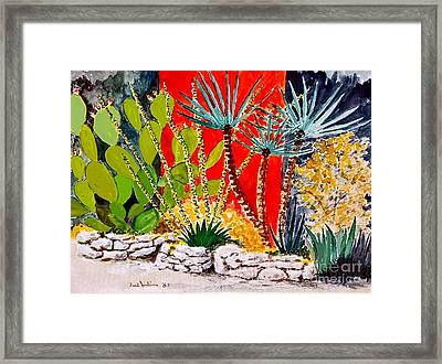 Lake Travis Cactus Garden Framed Print by Fred Jinkins