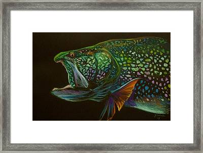 Lake Trout Portrait Framed Print by Yusniel Santos