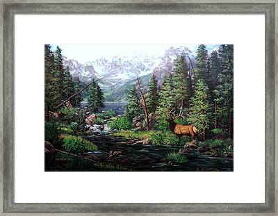 Lake Verna Elk Framed Print by W  Scott Fenton