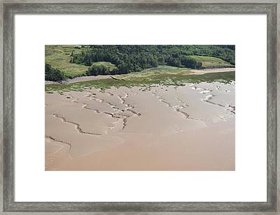 Lakeshore Landscape Created By Tides Framed Print by Bernard Dupuis