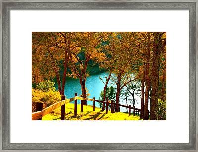 Lakeshore Lane Framed Print by Stephen Edwards