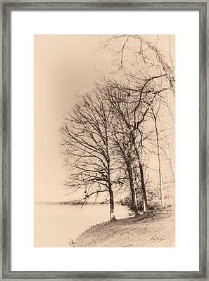 Lakeshore Park Framed Print by Barry Jones