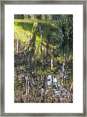 Framed Print featuring the photograph Lakeshore Reflections by Kate Brown