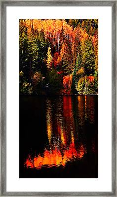 Lakeshore Reflections Framed Print by Terril Heilman