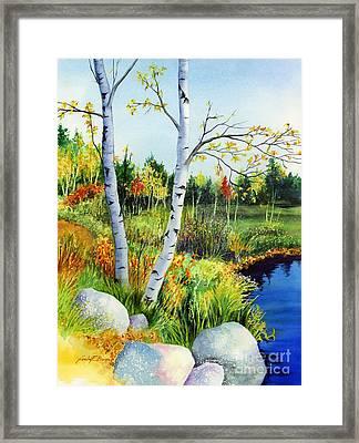Lakeside Birches Framed Print by Hailey E Herrera