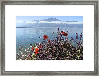 Lakeside Flower Beds Framed Print