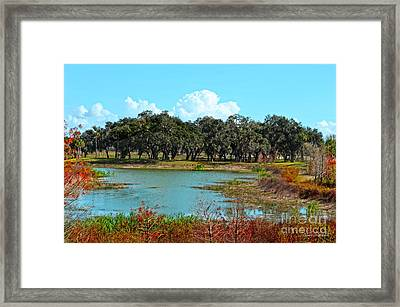 Lakeside In Sumter County Framed Print by Mary Machare