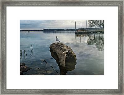 Lakeside Framed Print by Steven  Michael