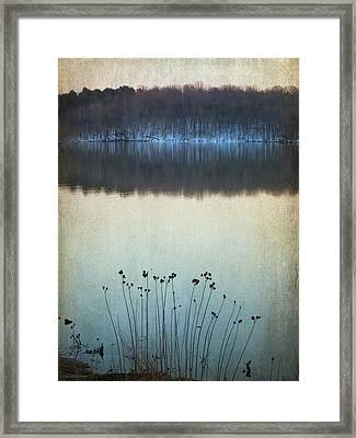 Lakeside Winter Flowers Framed Print