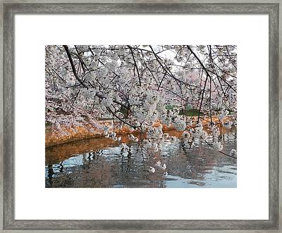Framed Print featuring the photograph Lakeside by Yue Wang