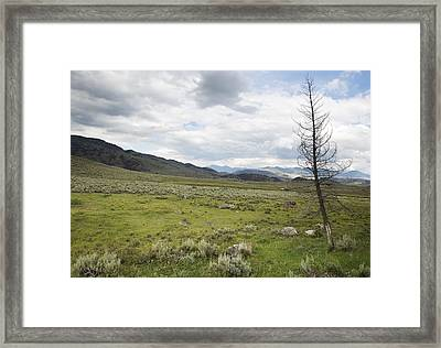 Framed Print featuring the photograph Lamar Valley No. 1 by Belinda Greb