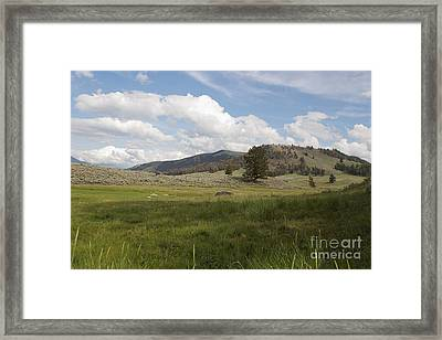 Framed Print featuring the photograph Lamar Valley No. 2 by Belinda Greb