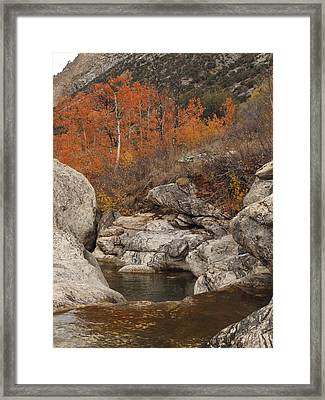 Lamoille Canyon Colors Framed Print by Jenessa Rahn