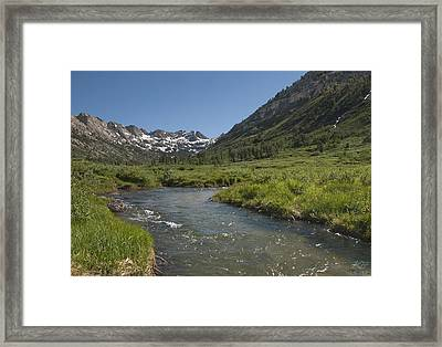 Lamoille Creek Framed Print