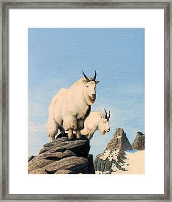 Lamoille Goats Framed Print