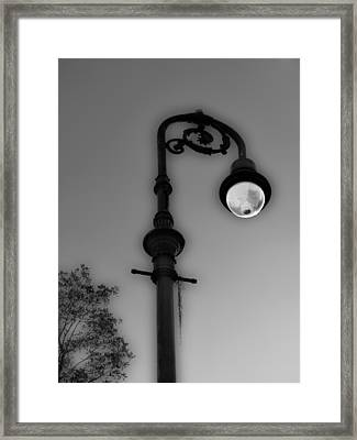 Framed Print featuring the photograph Savannah Lamp Post by Frank Bright