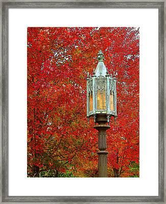 Lamp Post In Fall Framed Print