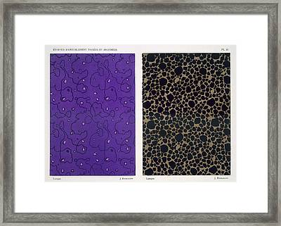 Lampas, From Woven And Brocaded Framed Print