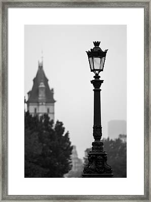 Lamppost At Pont Neuf Paris Framed Print