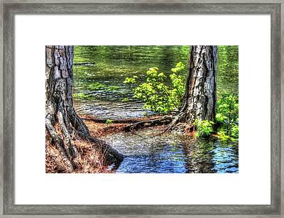 Land Bridge Framed Print by Daniel Eskridge