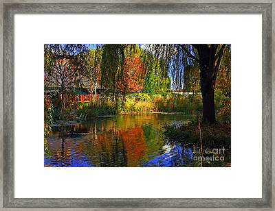 Land Of Enchantment  Framed Print by Marcia Lee Jones