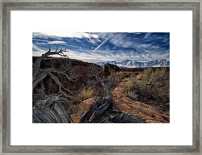 Land Of Extremes Framed Print by Cat Connor