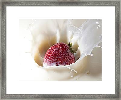 Land Of Milk And Honey 10 Framed Print by James Sage