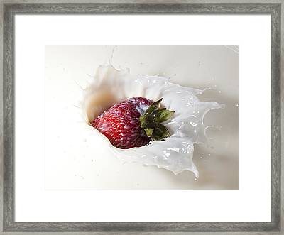Framed Print featuring the photograph Land Of Milk And Honey by James Sage