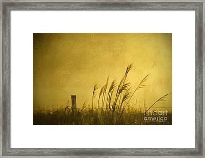 Land Of Stillness Framed Print