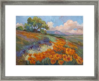 Land Of Sunshine Framed Print by Diane McClary