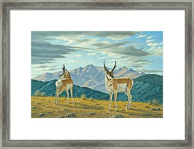 Land Of The Free Framed Print by Paul Krapf