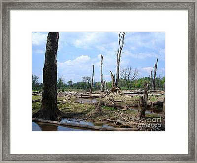 Framed Print featuring the photograph Land Of The Lost by Jane Ford