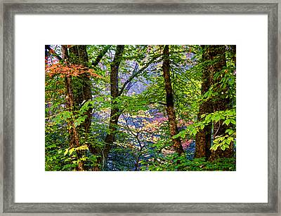 Land Of The Noonday Sun Framed Print