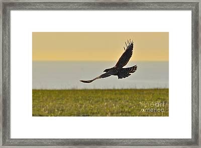 Land Sea And Sky Framed Print